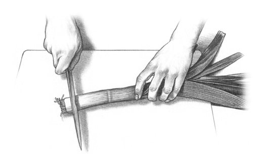 How to Prep a Leek - Step 1