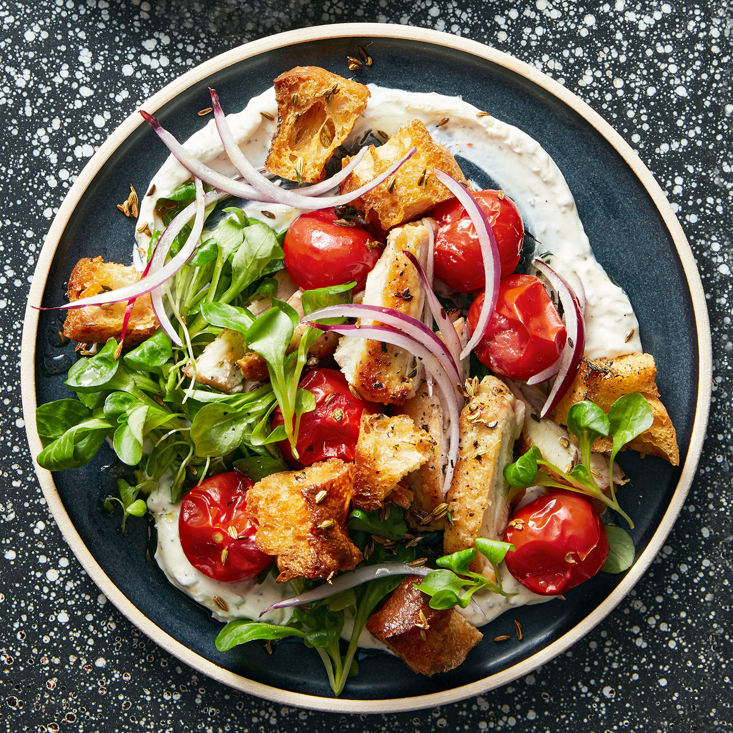pan-seared chicken thighs with roasted-tomato panzanella