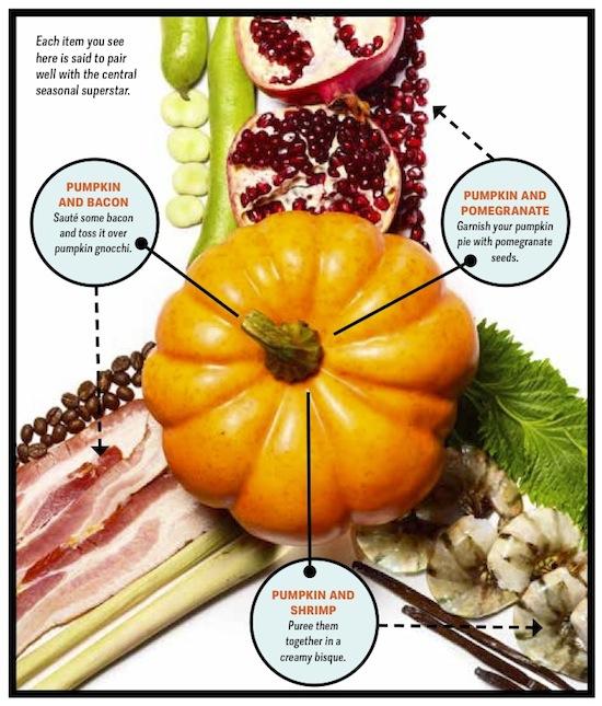 Foodpairing Pumpkin