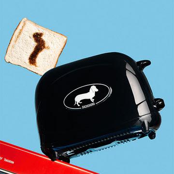 Pangea toaster