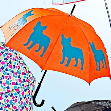 Dog Park Umbrella