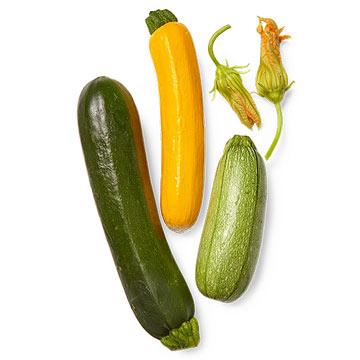 Zucchini for All