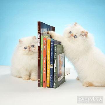 Reading is Fun!