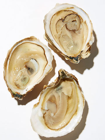 Connecticut -- Bluepoint Oyster