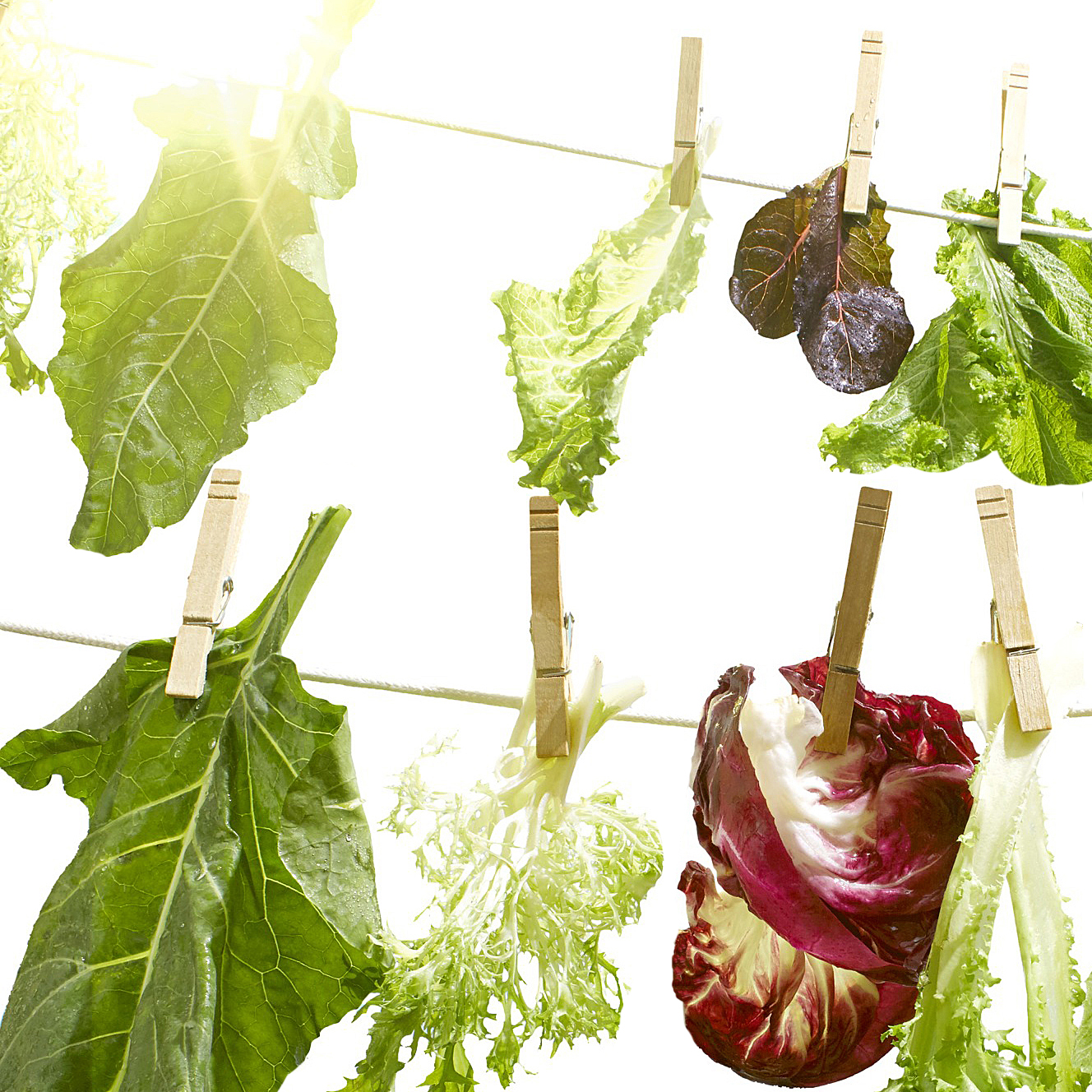 greens on clothesline drying