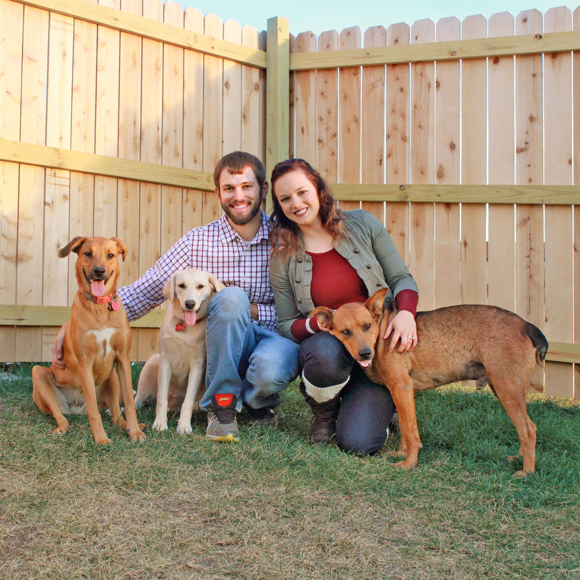 more dogs saved Desirae and Kelsey Allen