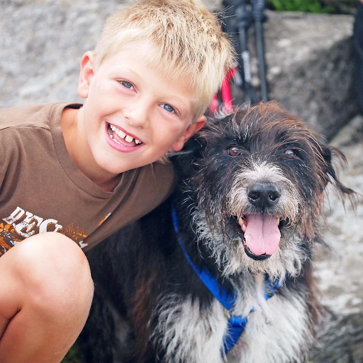 another dog saved macie