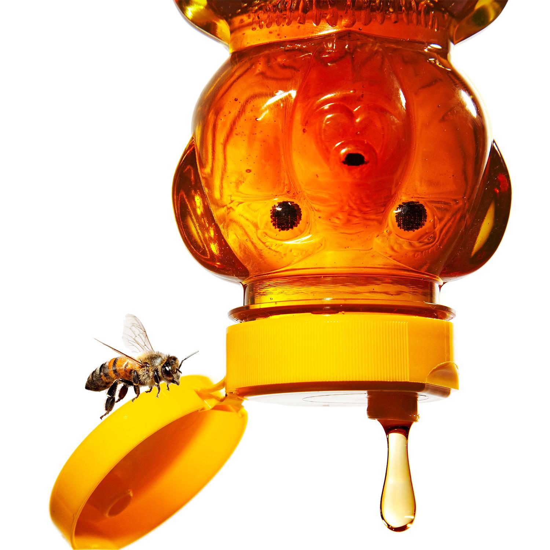 honey bee and honey bottle