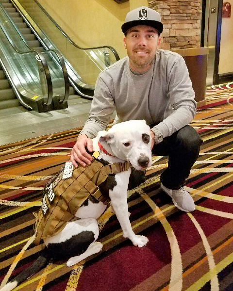 rescue pit bull mix with owner