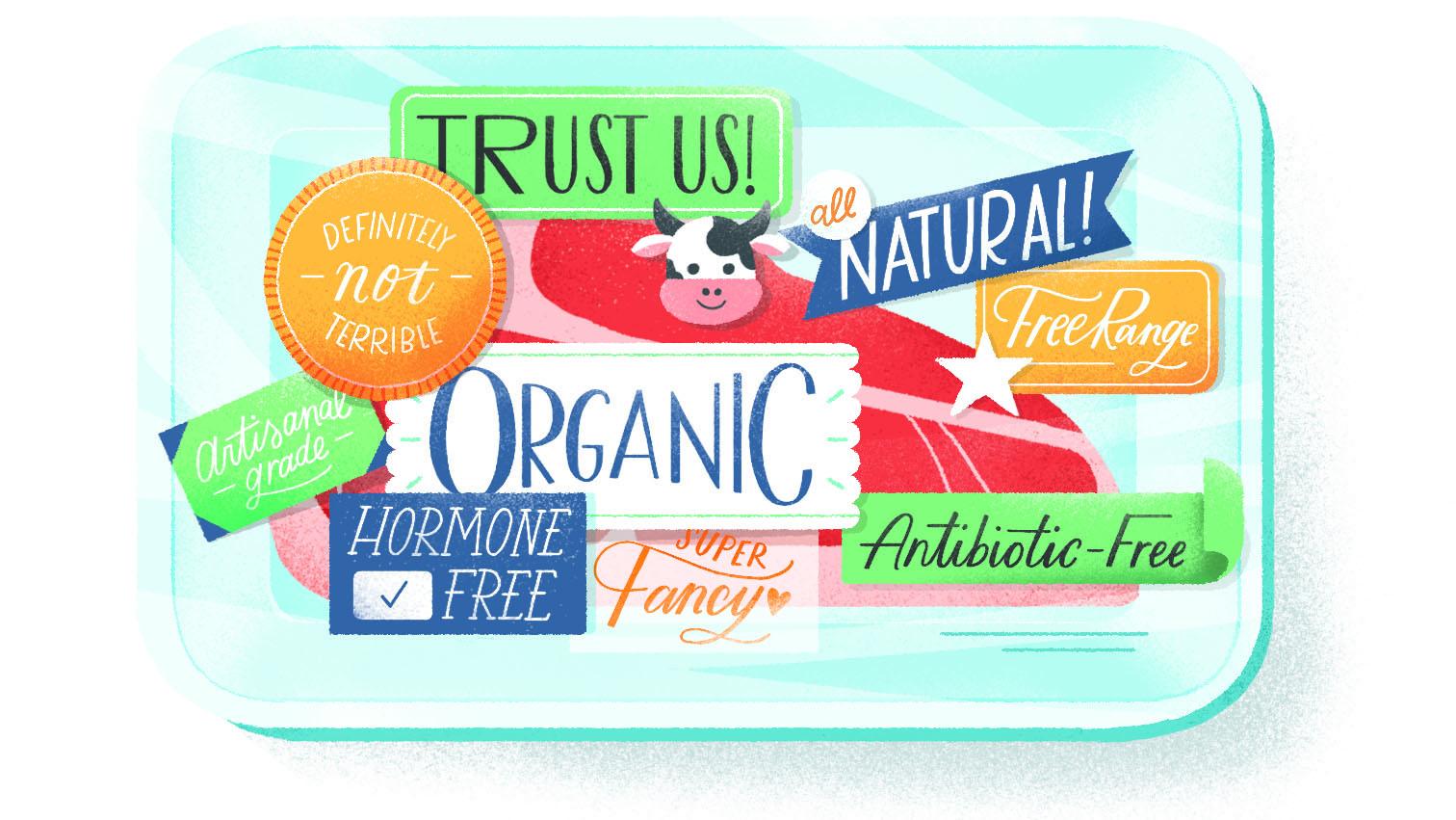 Meat Labels Illustration