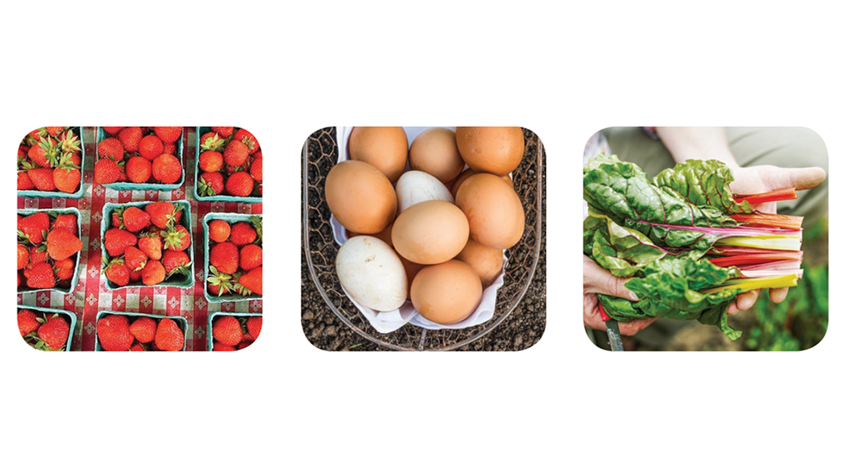 strawberries, eggs, and chard