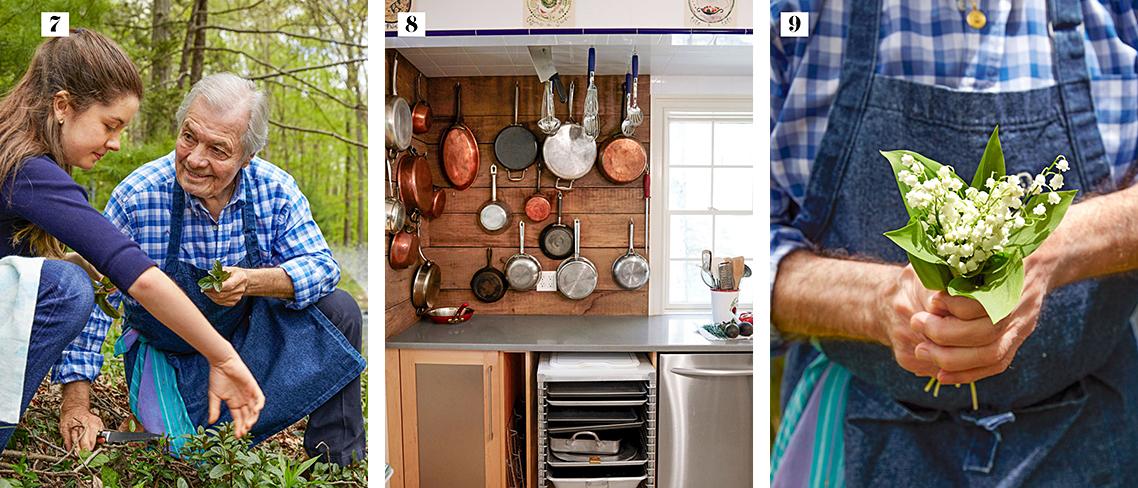 jacques-shorey-garden-pots-pans-bouquet-collage