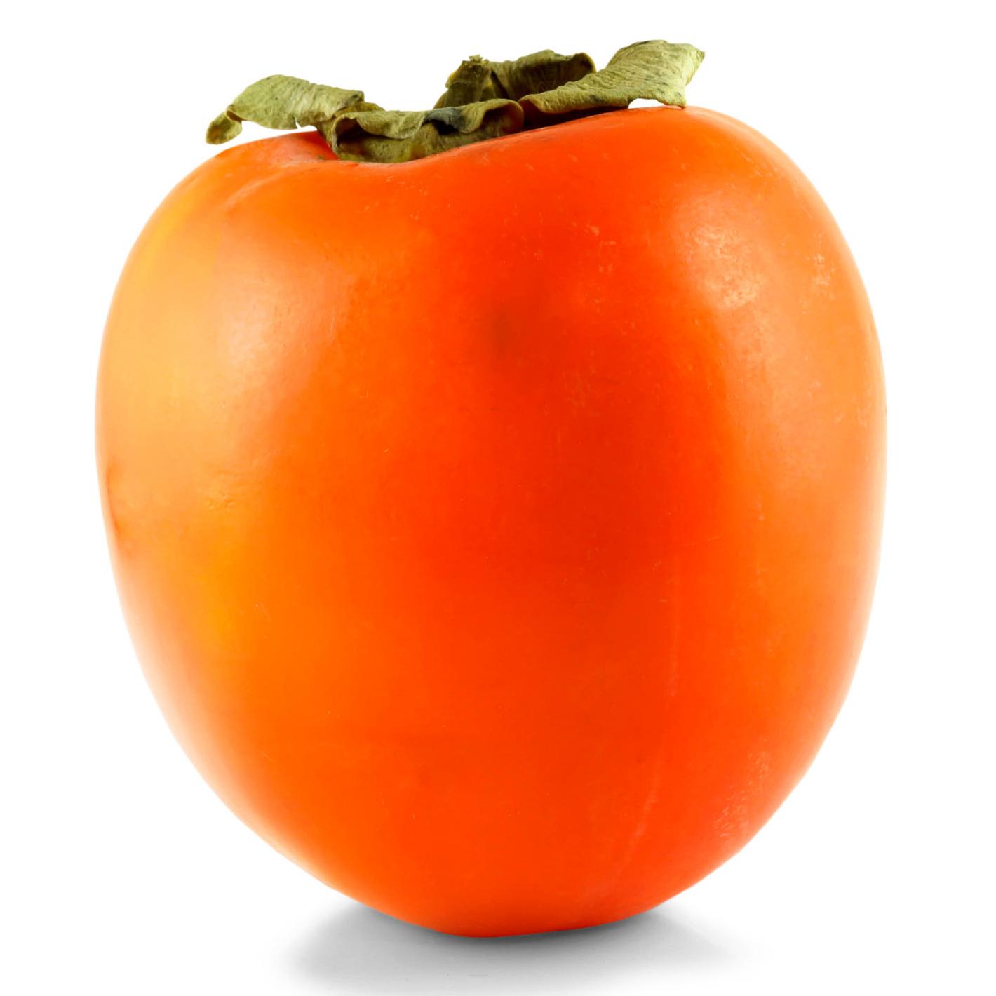 hachiya persimmon