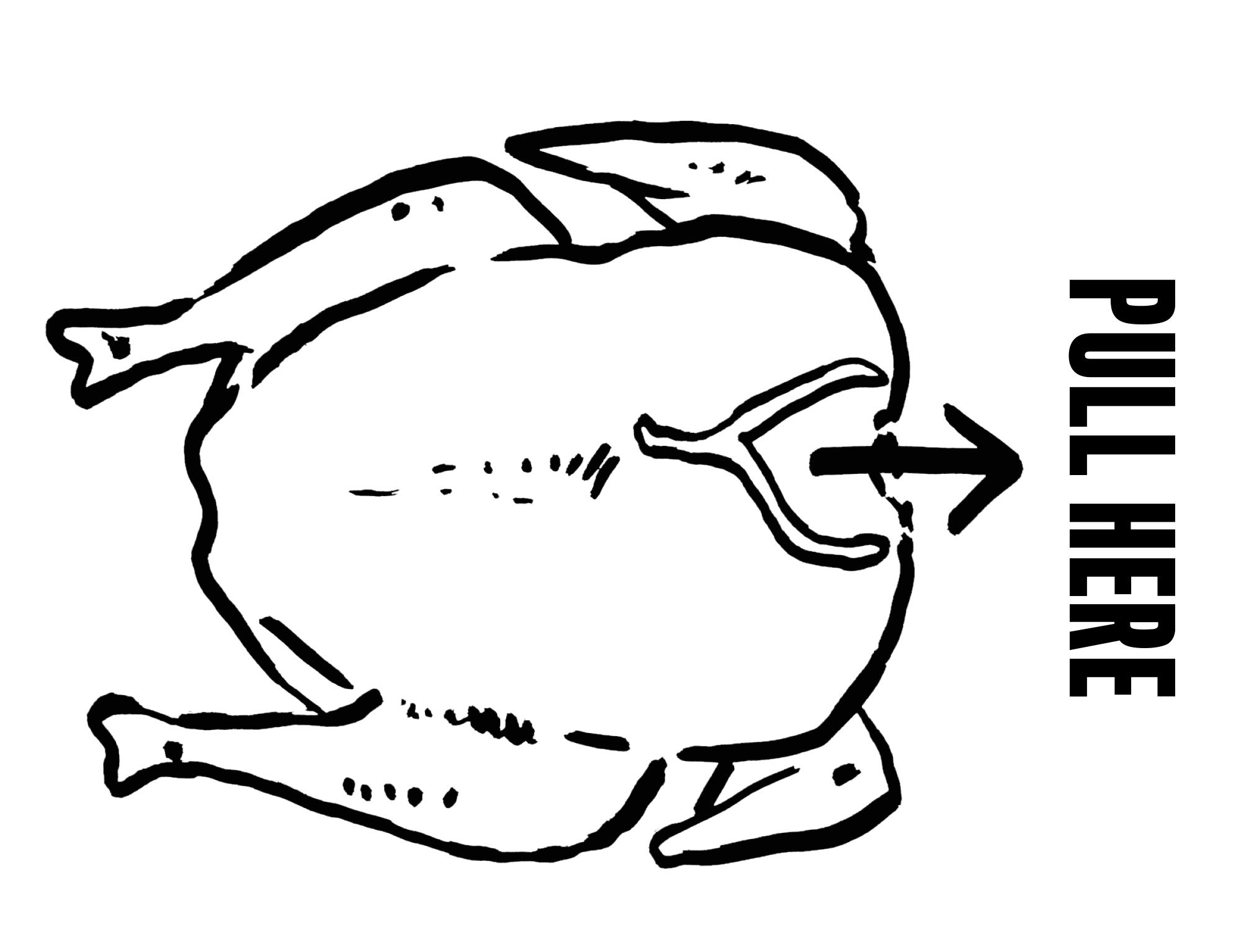 chicken wishbone illustration
