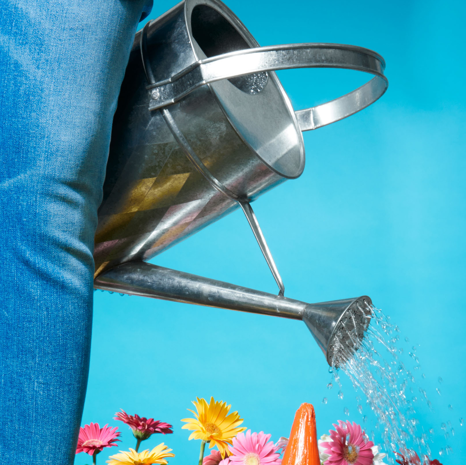 galvanized metal traditional watering can