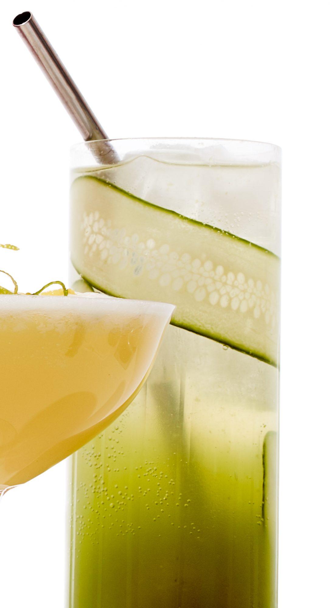 fennel cucumber spritzer