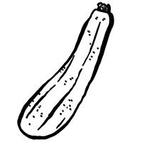 zucchini-squash-illustration-0818-dde2ae87