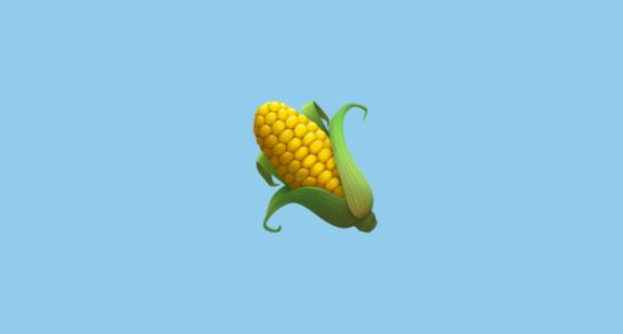 ear-of-maize_1f33d