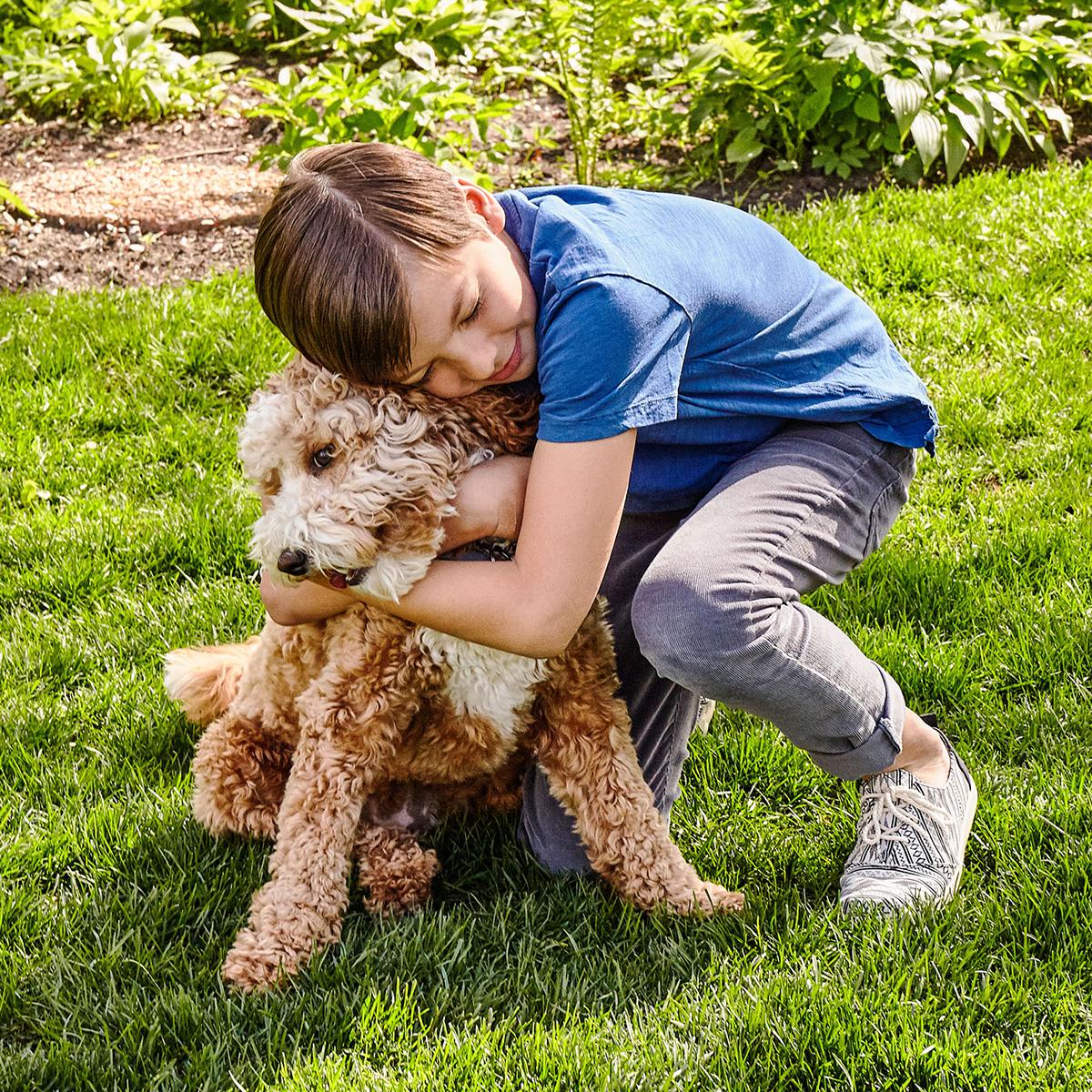 boy son dog lawn hugs