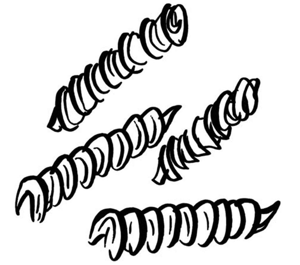 twisted pastas
