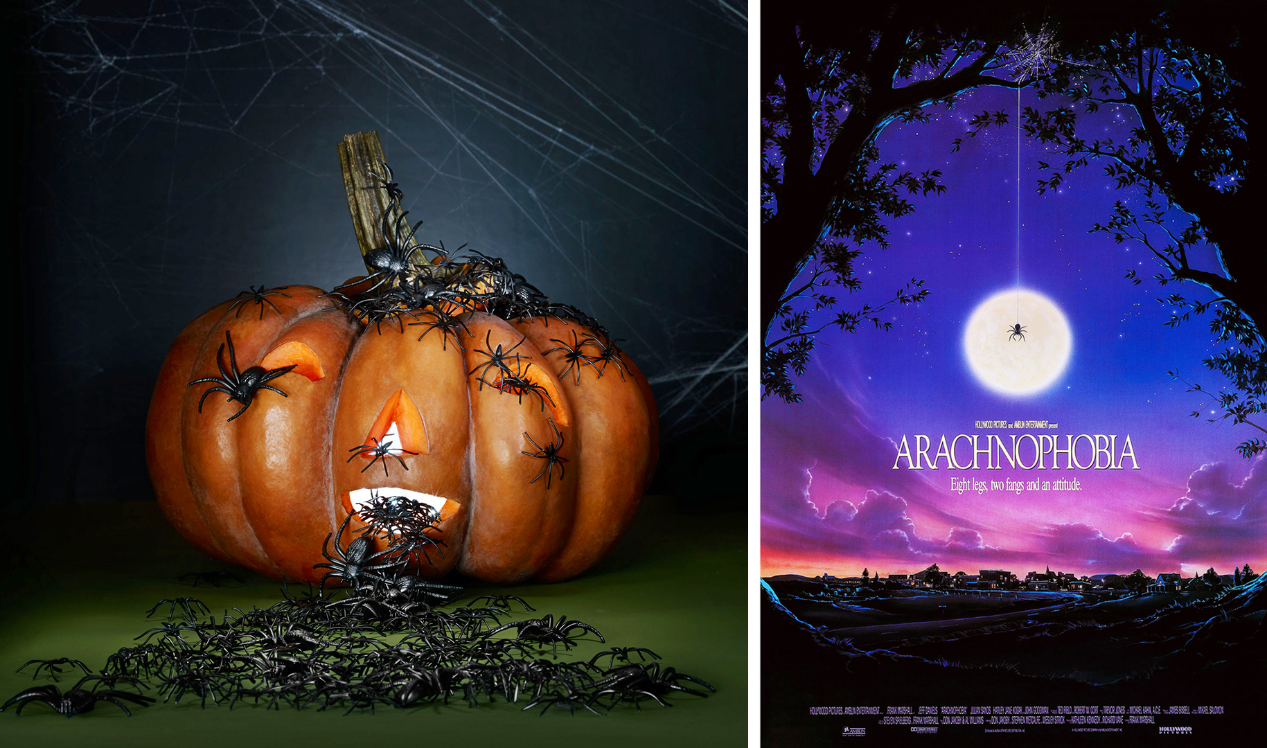 arachnophobia pumpkin and poster