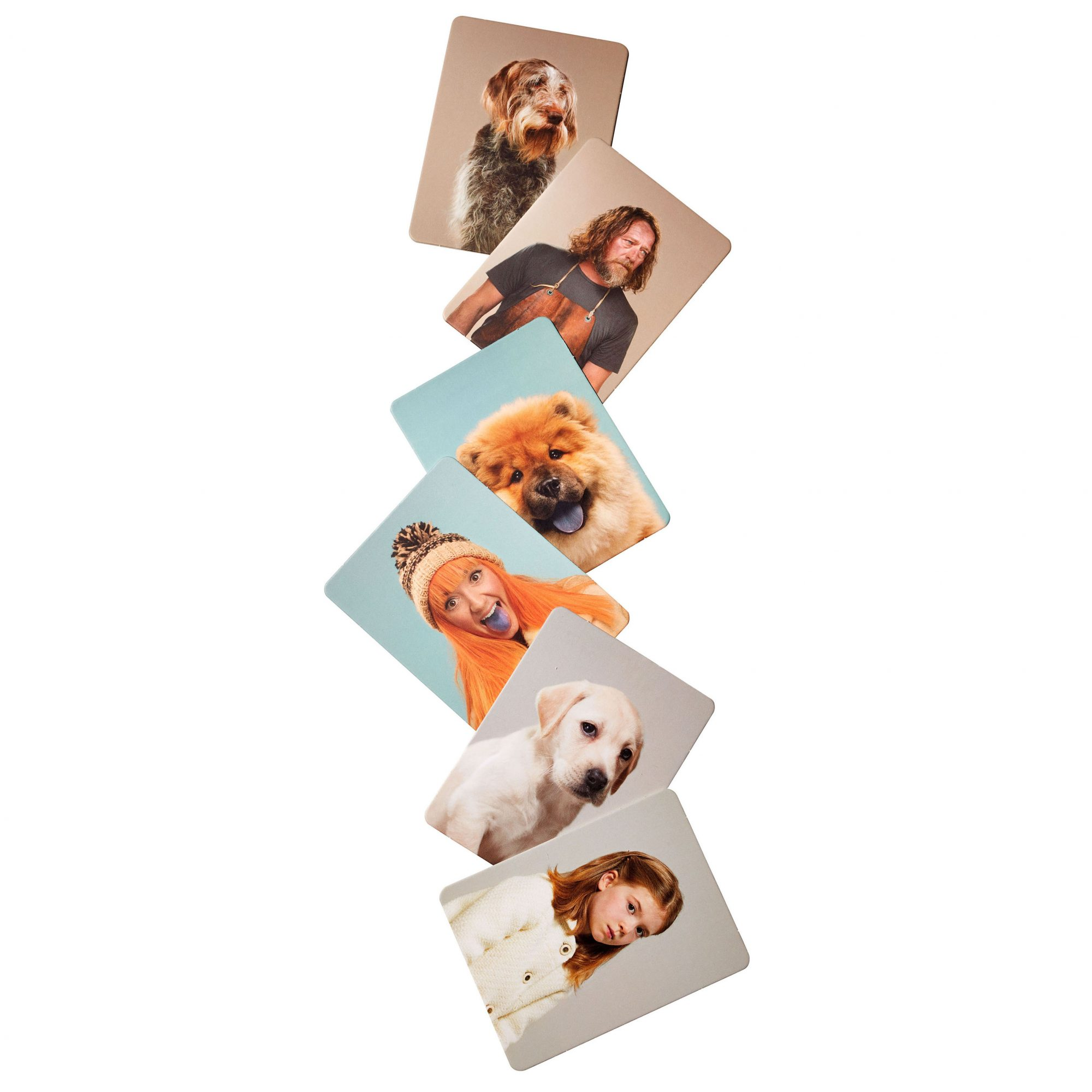 do you look like your dog card matching game