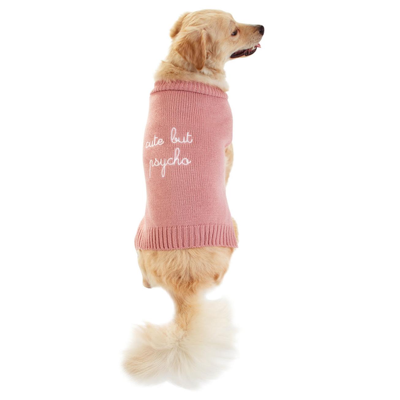 max bone dog sweater