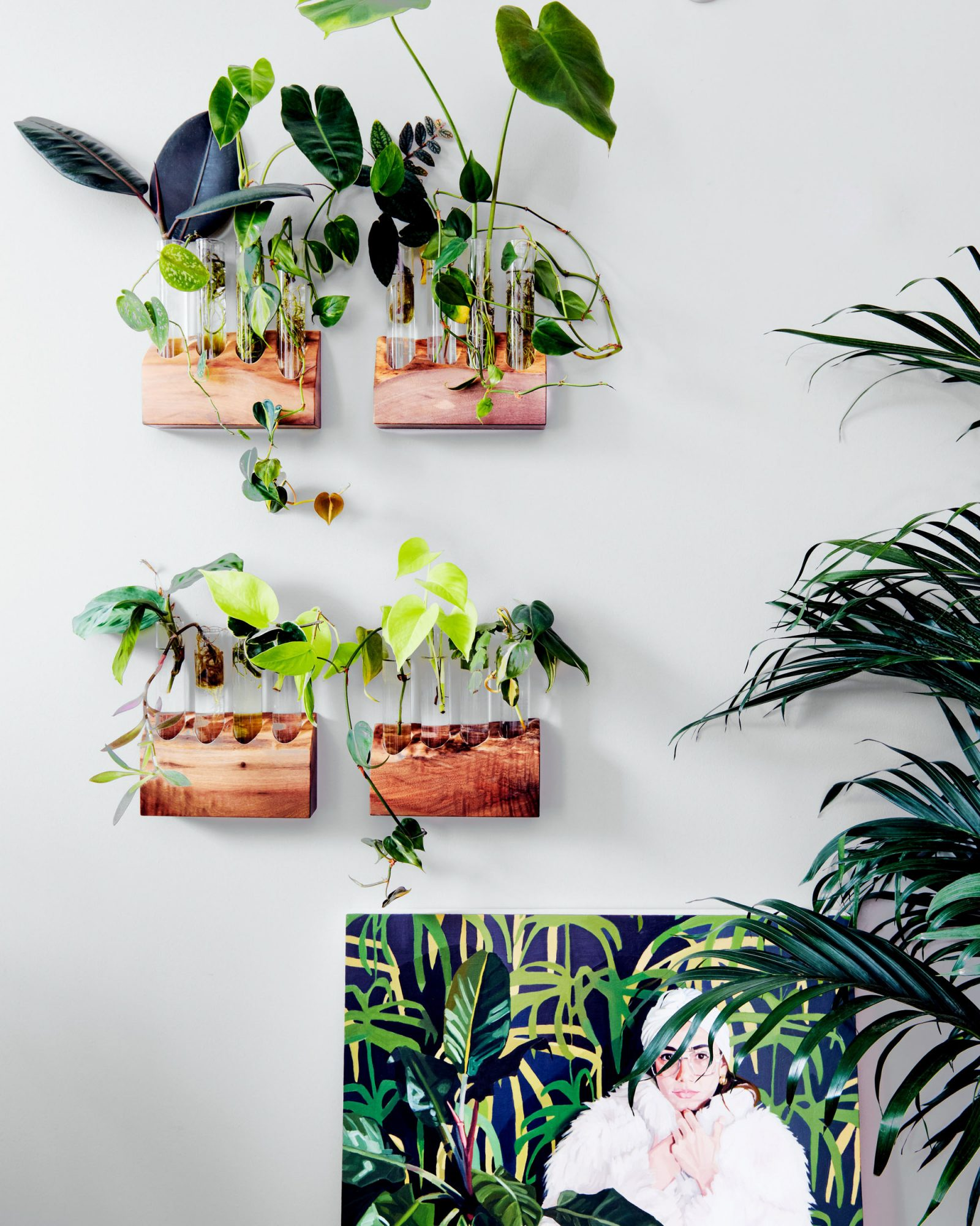 plant cuttings growing on custom display living wall