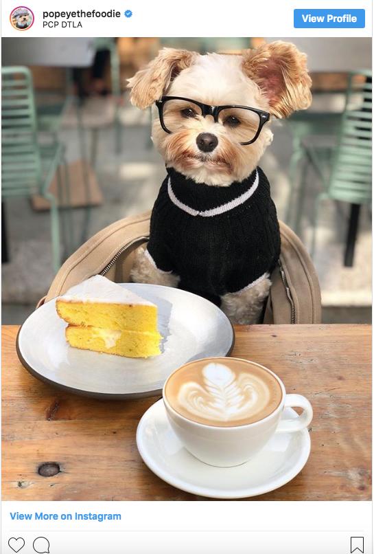 Popeye the Foodie Instagram