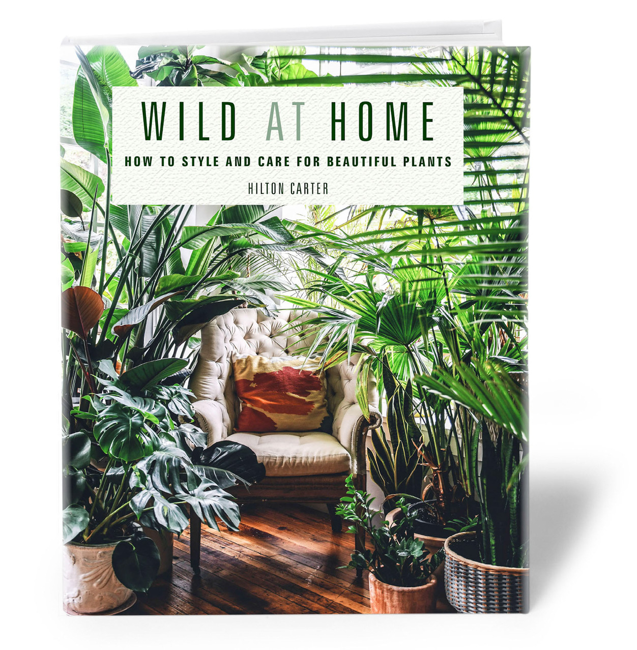wild at home plant book by hilton carter