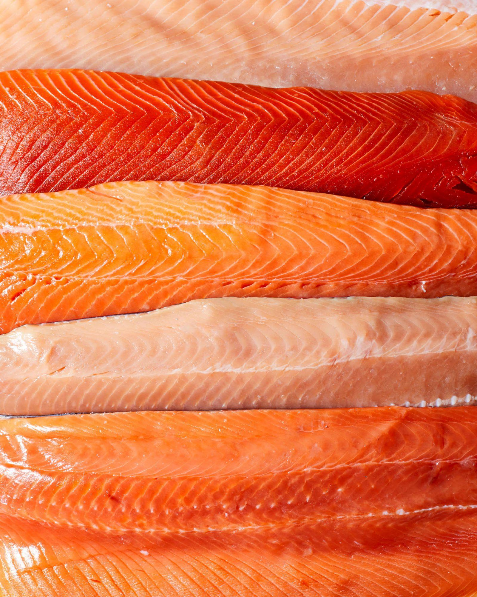 various types of raw salmon