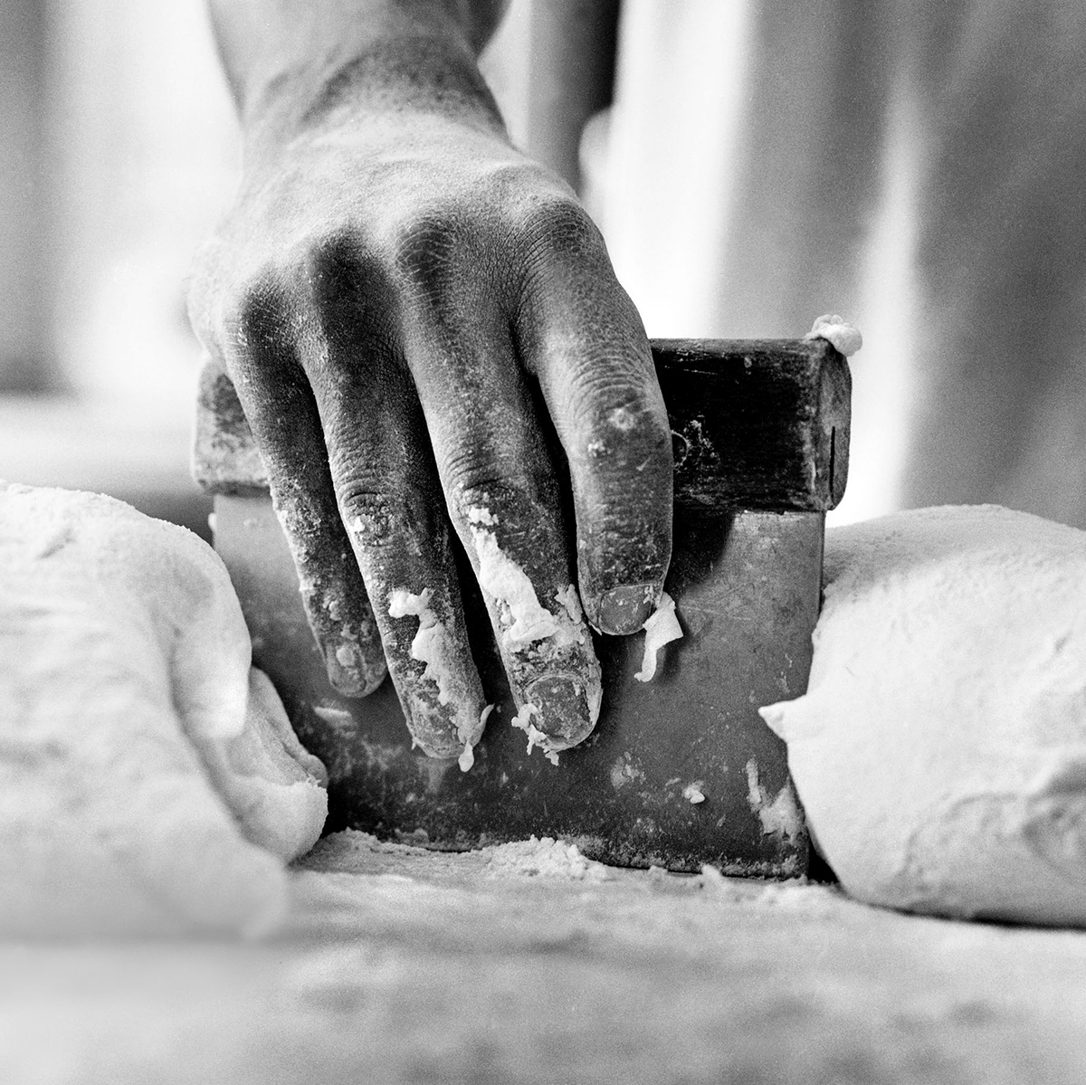 bench scraper hand dough