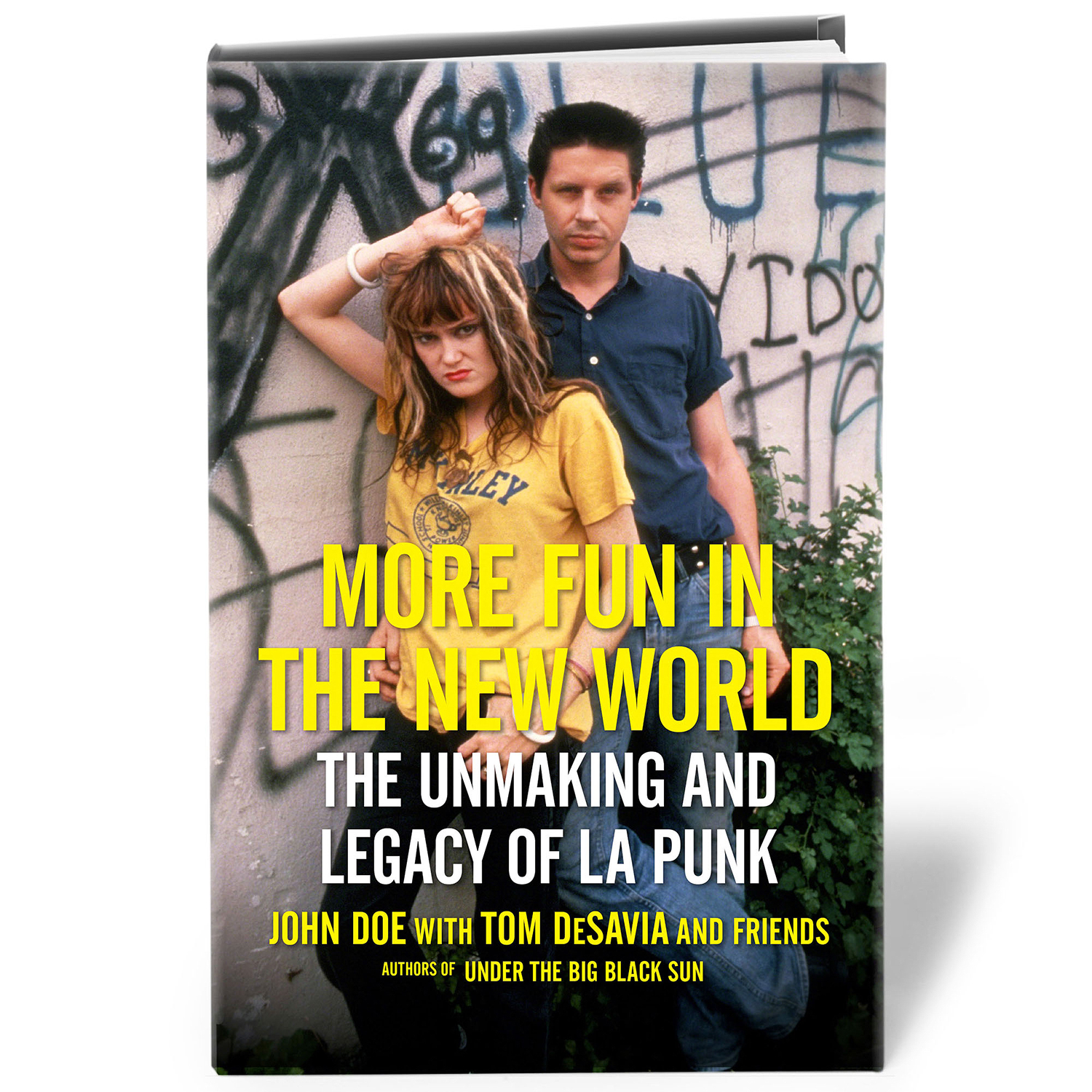 More Fun In The New World: The Unmaking and Legacy of LA Punk book