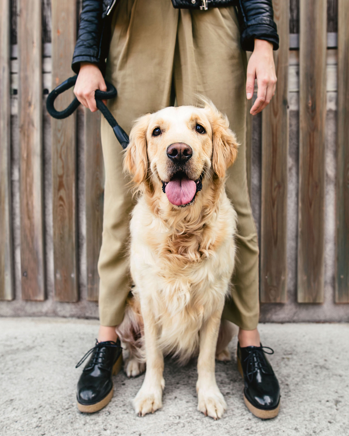 woman holding leash with golden retriever