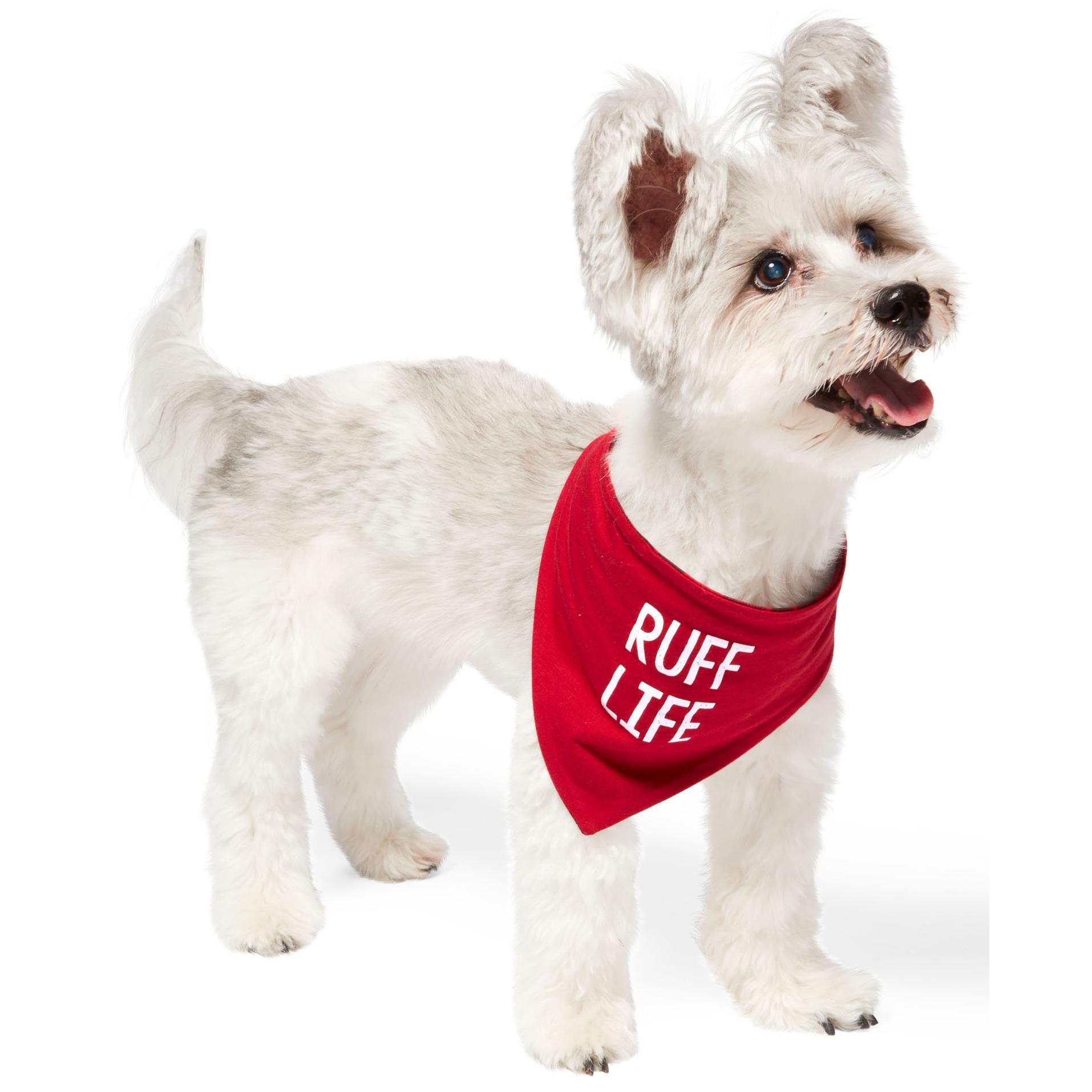 soma family pajama set ruff life dog bandana