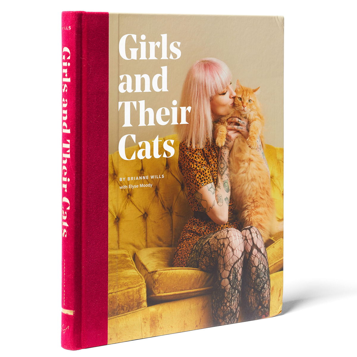 Girls and Their Cats book