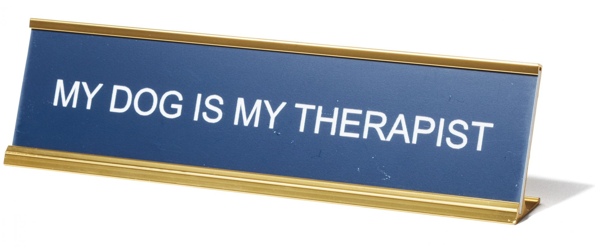 My Dog Is My Therapist Metal Nameplate Sign
