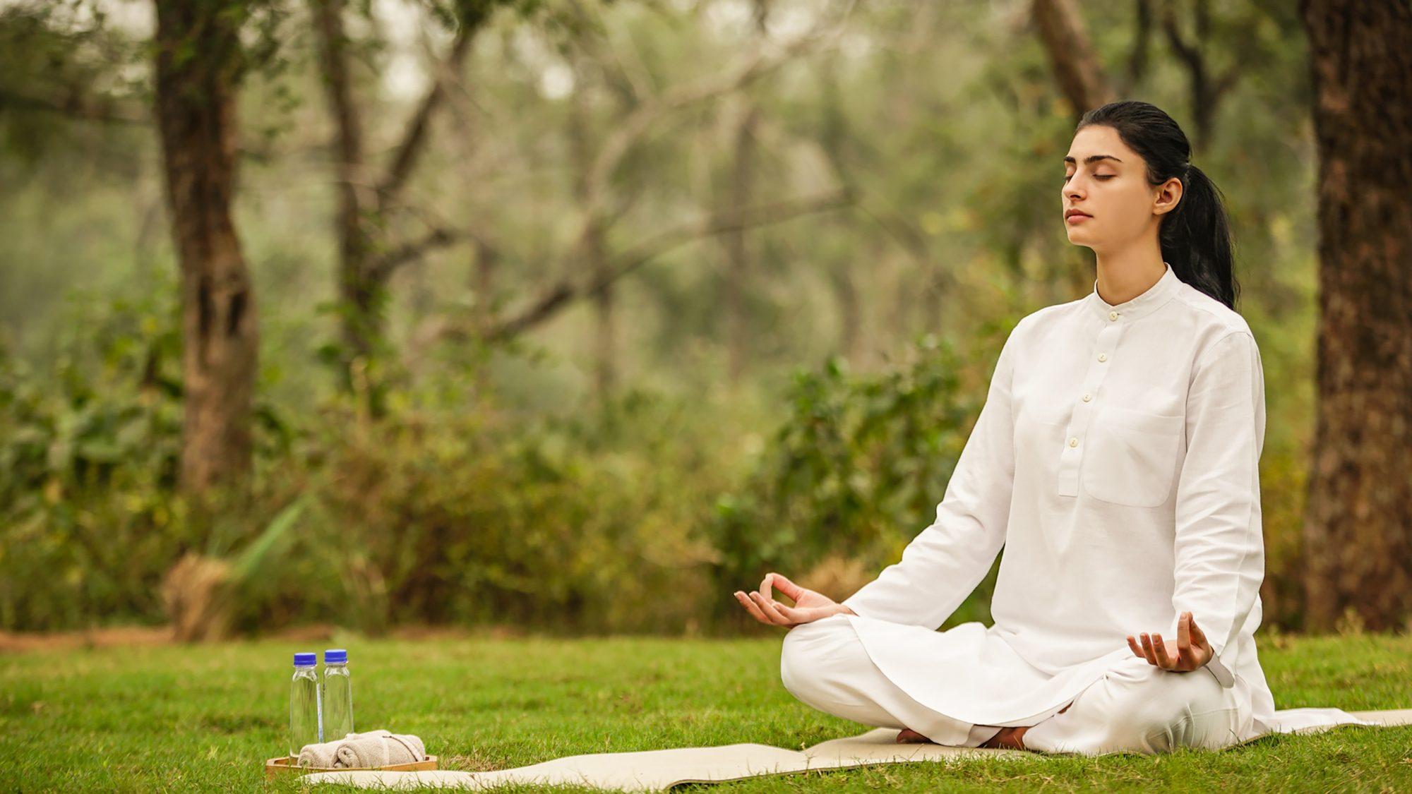 Forest Meditation (1)