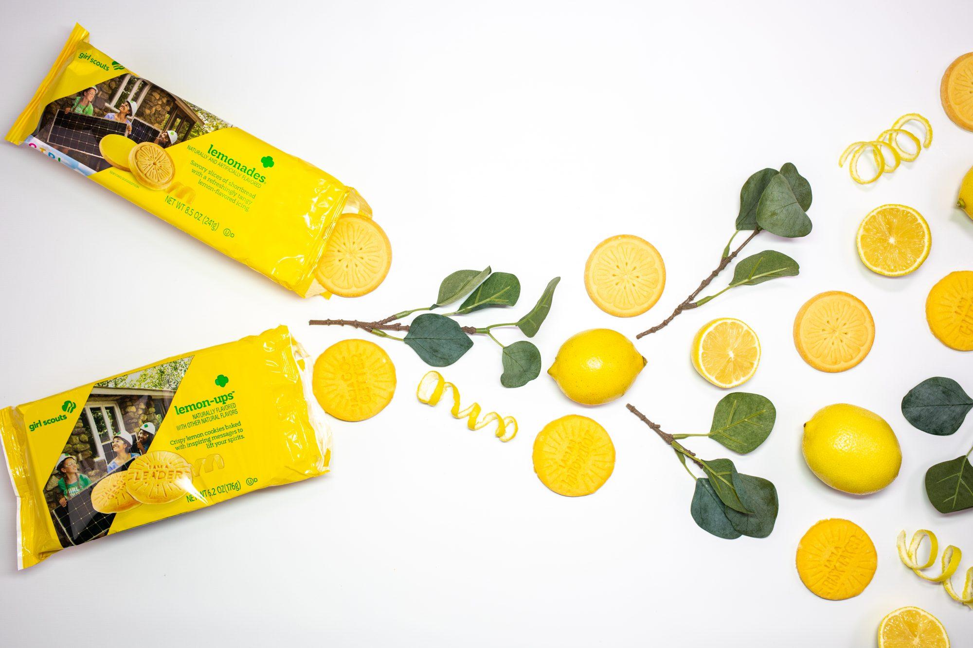 LemonCookie19_0116_1905