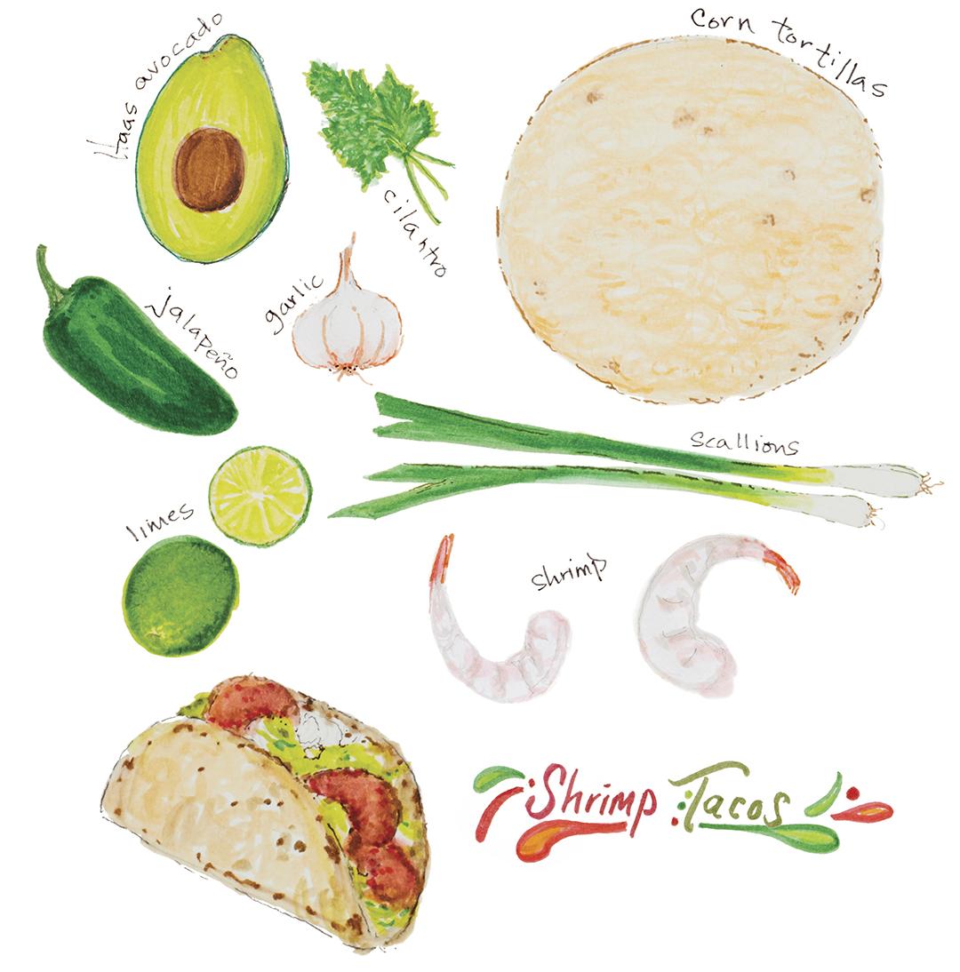 illustration of shrimp taco ingredients