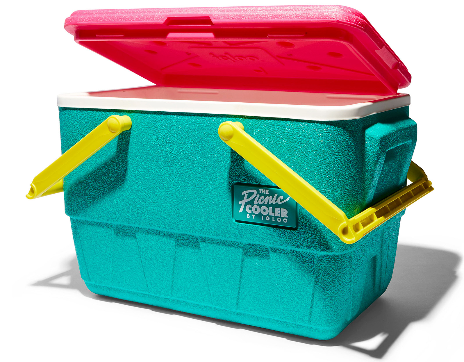 retro colorful Igloo picnic cooler