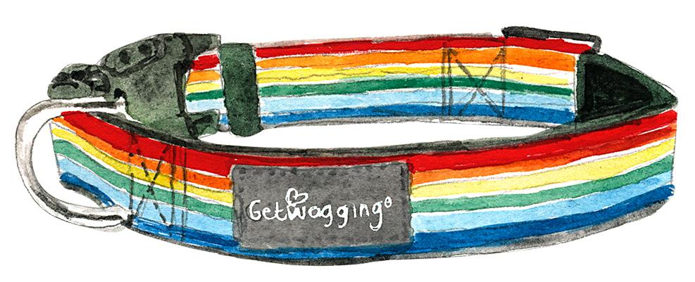 Get Wagging rainbow dog collar illustration