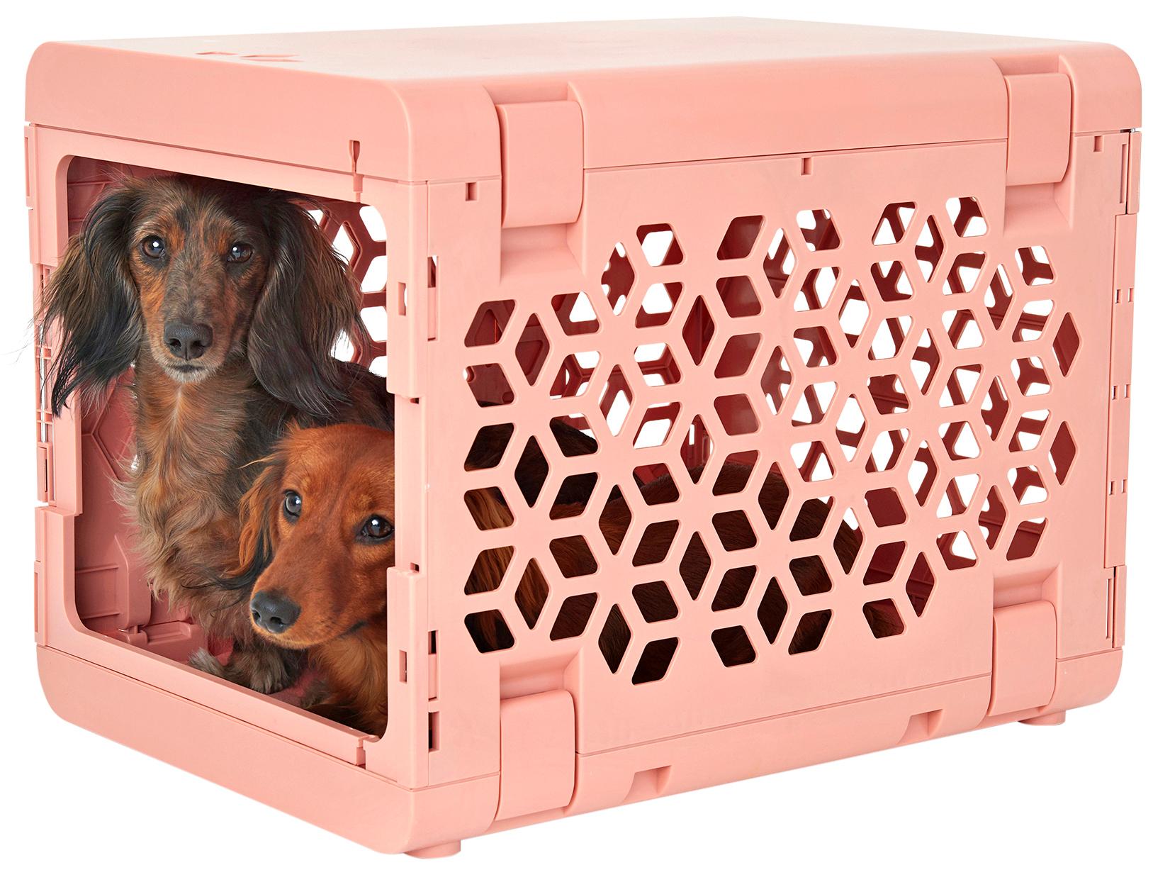 pink pet carrier kennel