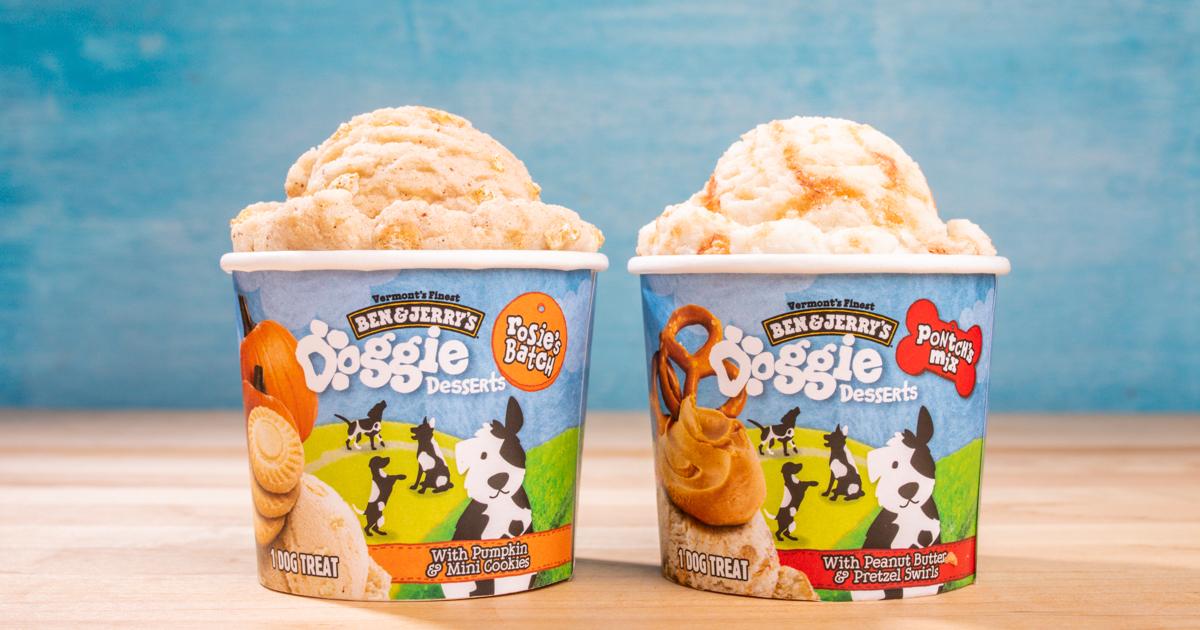 ben and jerry's ice cream dog pup pet dessert treat