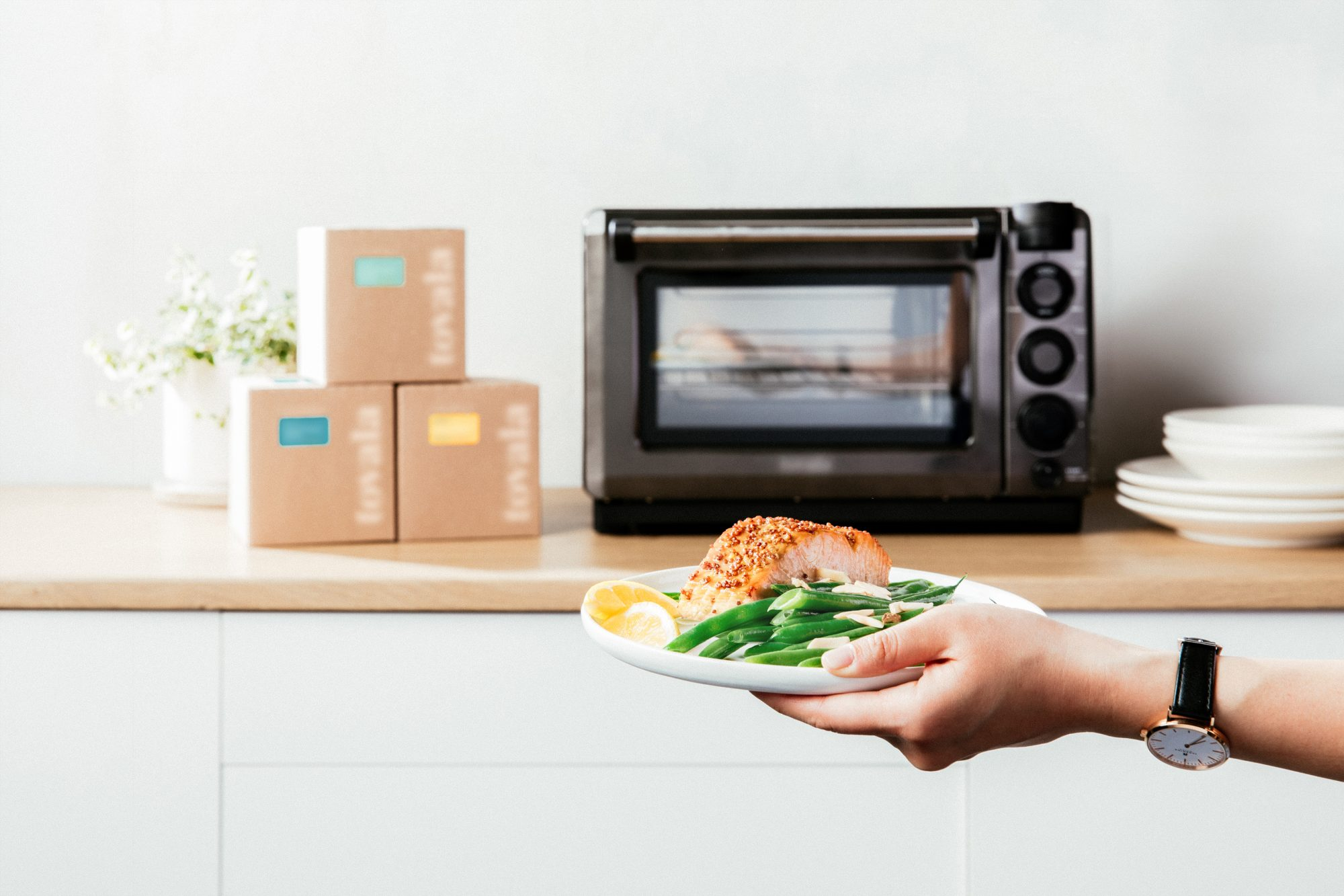 hands holding a plate of food in front of tovala oven and subsctiption meal kit boxes