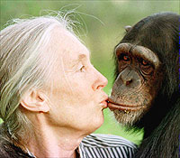 Jane Goodall, Africa In My Blood: An Autobiography In Letters