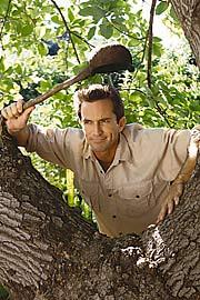 Jeff Probst, Survivor