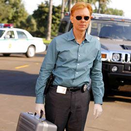 David Caruso, CSI: Miami