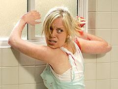 Sarah Polley, Dawn of the Dead (Movie - 2004)
