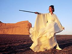 Maggie Cheung, Hero (Movie - 2004)